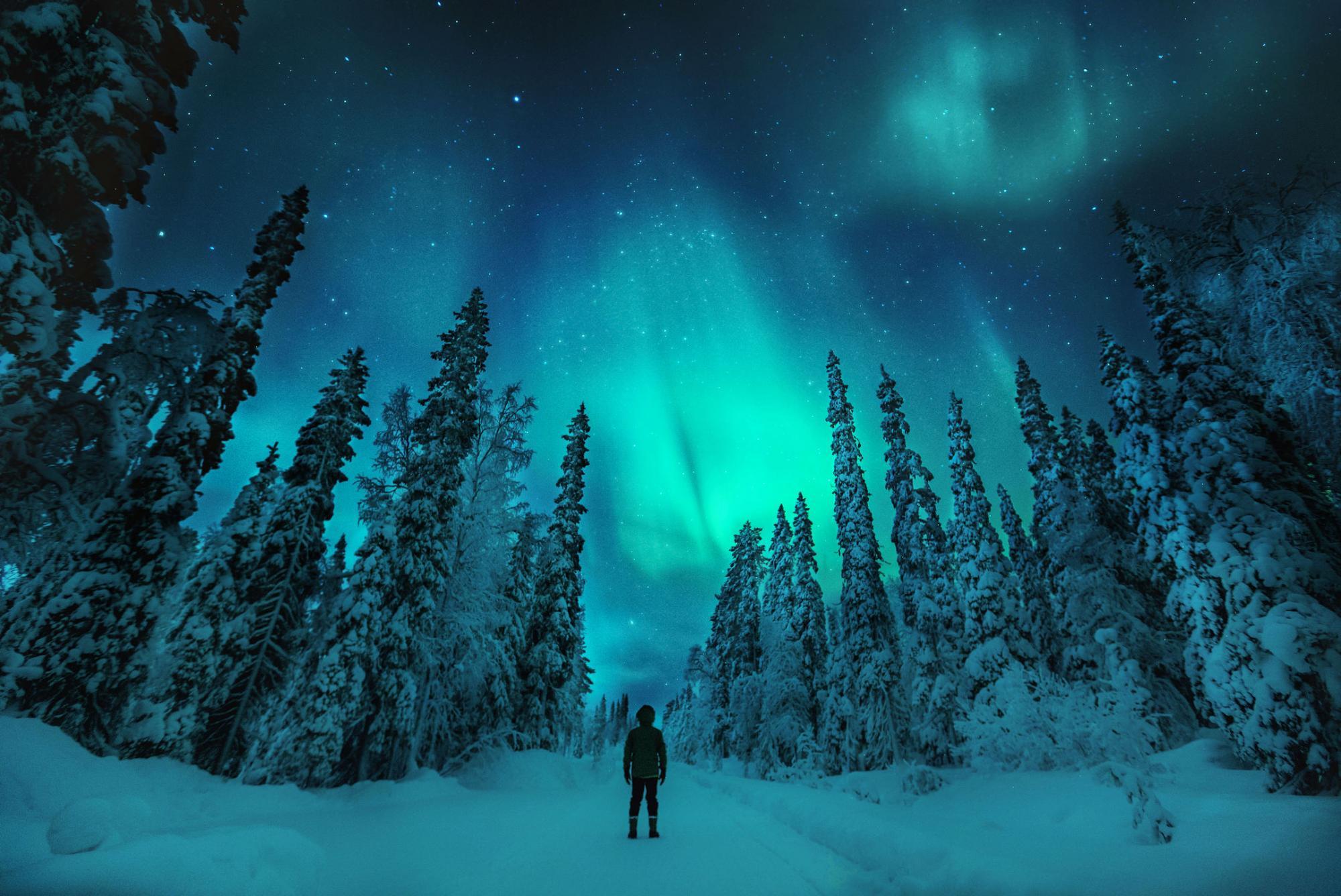 Entdecke die Nordlichter Finnlands! | © Konsta Punkka / Visit Finland
