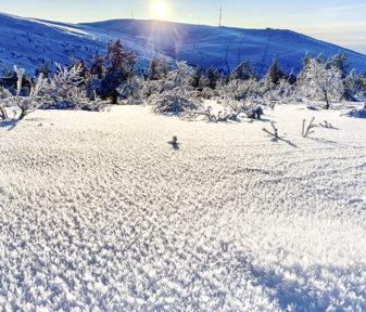 Kaunista, mutta petollista. Lumisateiden jälkeisillä pakkasilla on muodostunut pintakuuraa. Kuva: Ylläs ski patrol